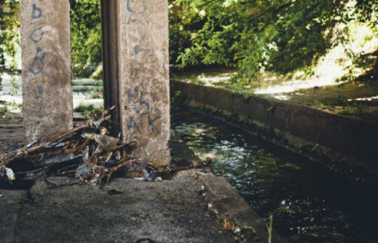 Доки комунальники сплять, активісти прибрали річку Либідь