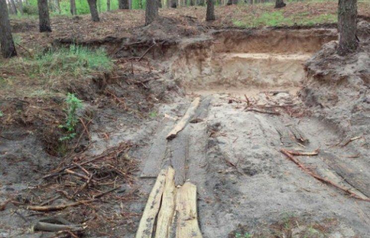 """Правоохоронців Сумщини підозрюють у """"кришуванні"""" піщаного бізнесу, який нищить ліси"""