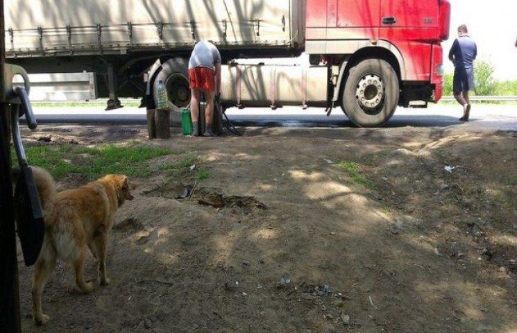 Сумчанин продавав бензин у лісі (ФОТОФАКТ)