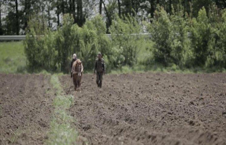 На Вінниччині за борги забирають землю