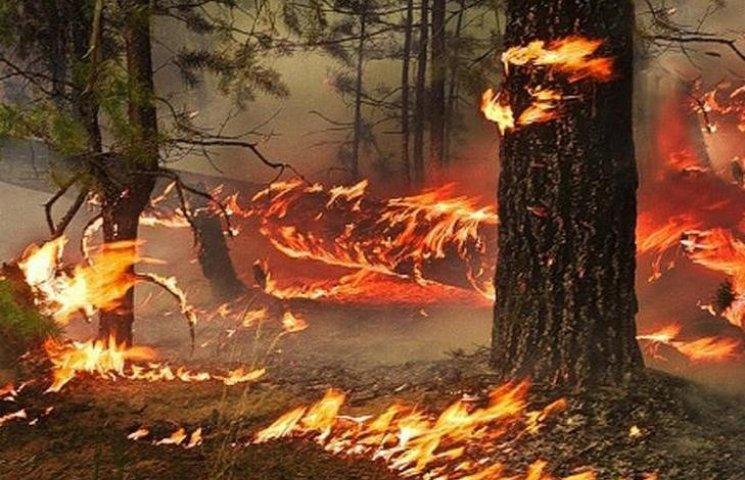 Вінничан попереджають про підвищену пожежну небезпеку