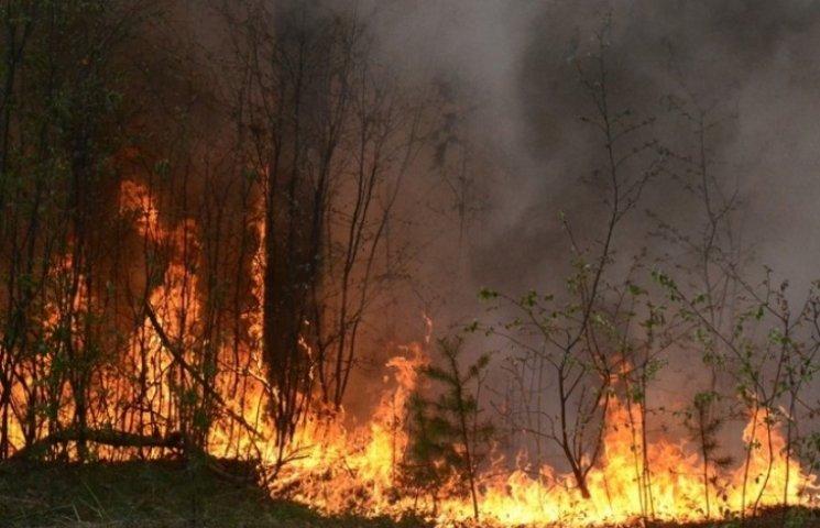 На Миколаївщини зберігається підвищена пожежна небезпека