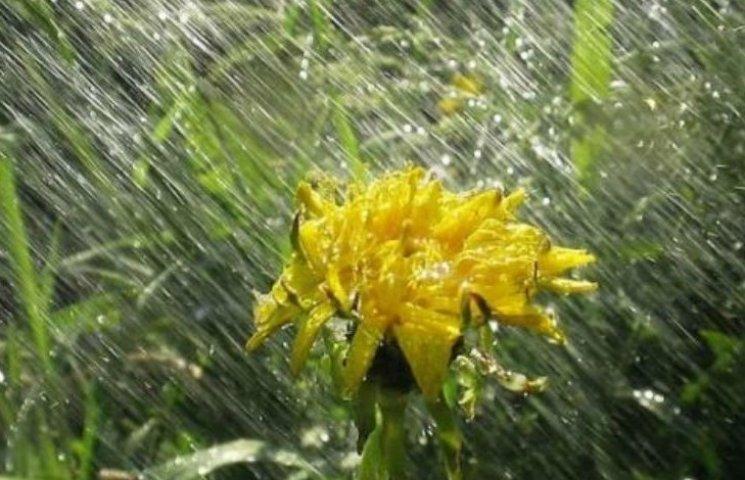 На Дніпропетровщину насуваються рясні дощі і грози