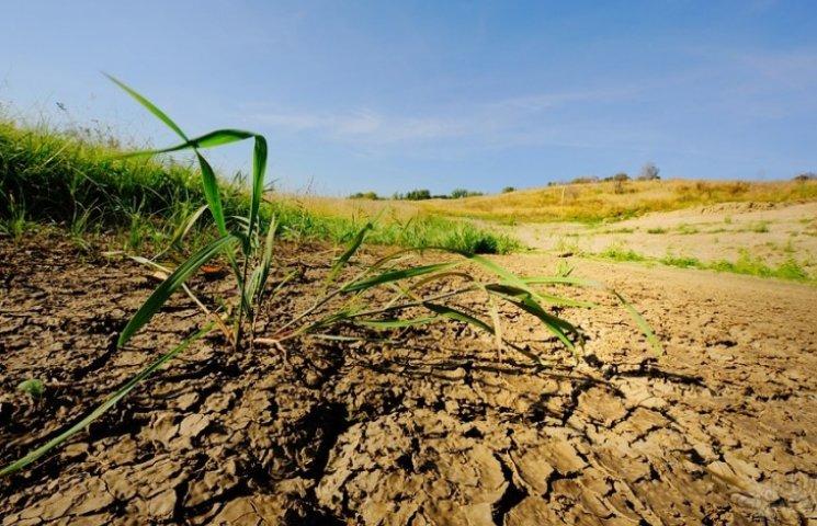 """Вінницькі ґрунти перетворюються на """"мертву"""" землю"""