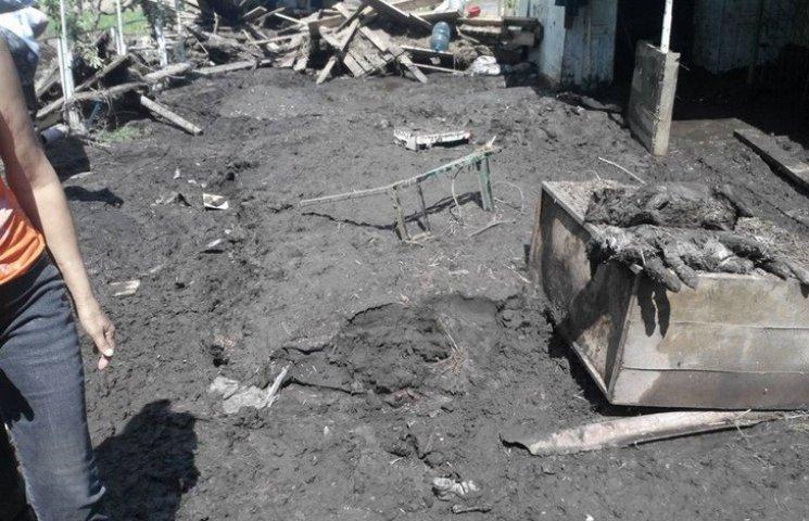 Під Дніпропетровськом сель зруйнував притулок для тварин
