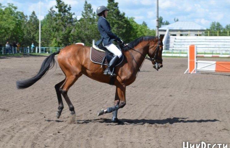 У Миколаєві стартували змагання з кінного спорту серед професіоналів і аматорів