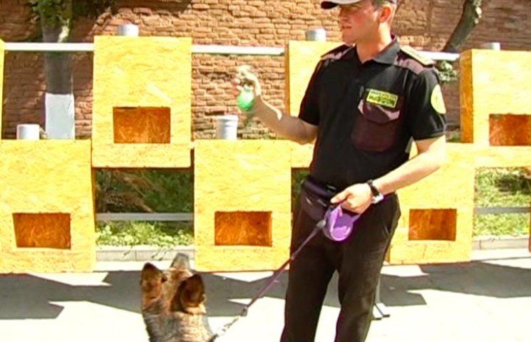 """Найіменитіша службова собака """"працює"""" у Хмельницькому"""