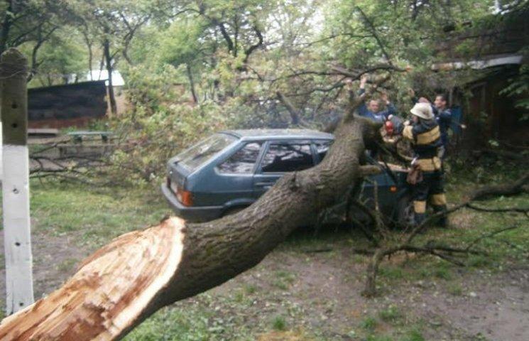У Вінниці негода пошкодила дві автівки