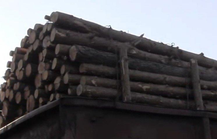 """Понад 20 вагонів лісу """"зникло"""" по дорозі зі Львова до Чернівців"""