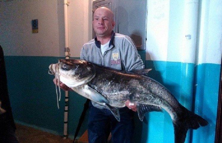 Тернополянина, який впіймав гігантського товстолоба, оштрафують на 1000 гривень