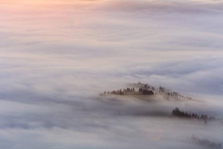 Які фантастичні, вкриті туманами, Карпати можна побачити тільки зранку