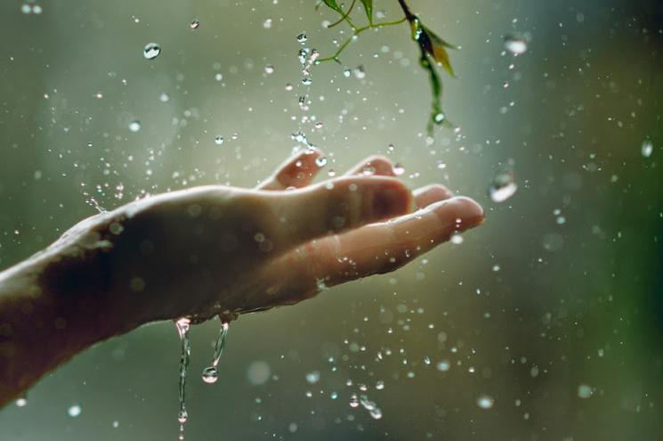 """Чому в """"мокрий"""" день, 24 травня, треба з…"""