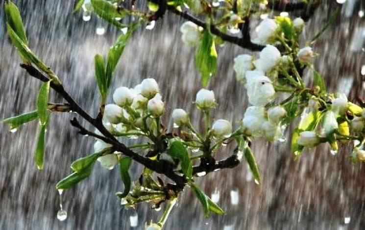 Чому сьоме травня - вдалий день, щоб потанцювати і позбутися усілякої напасті