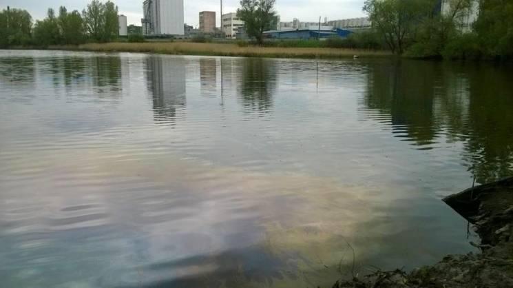 Київ суворий: Екологічна катастрофа знищує столичну водойму (ФОТО)