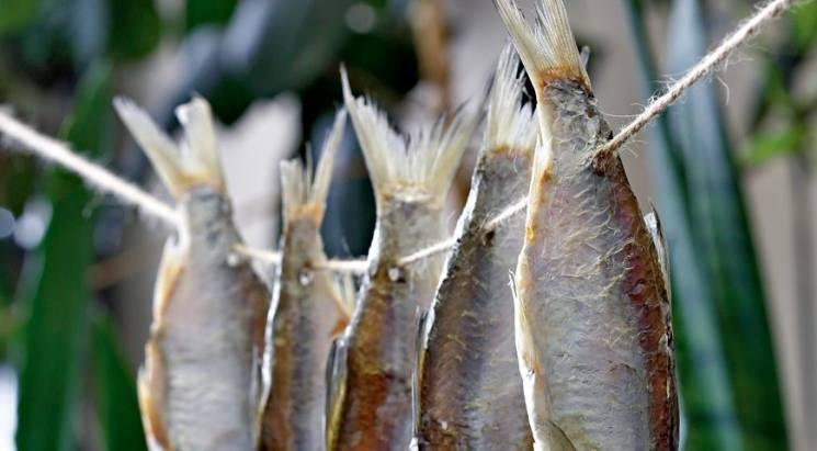 После вяленой рыбы мужчина оказался встоличной клинике — Ботулизм вернулся