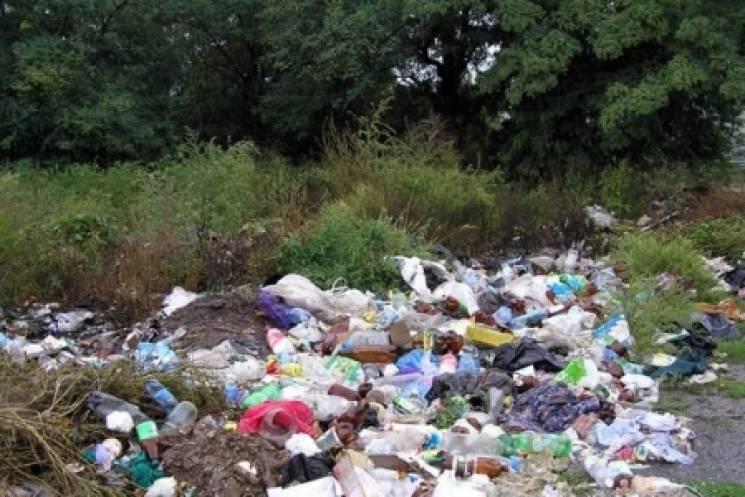 На Вінниччині сільський голова поплатився за неувагу до санітарного стану села