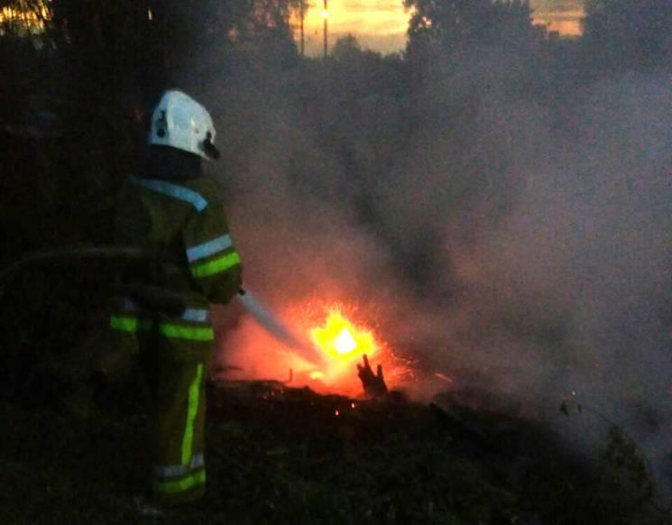У Полтаві бійці ДСНС гасили пожежу у дереві