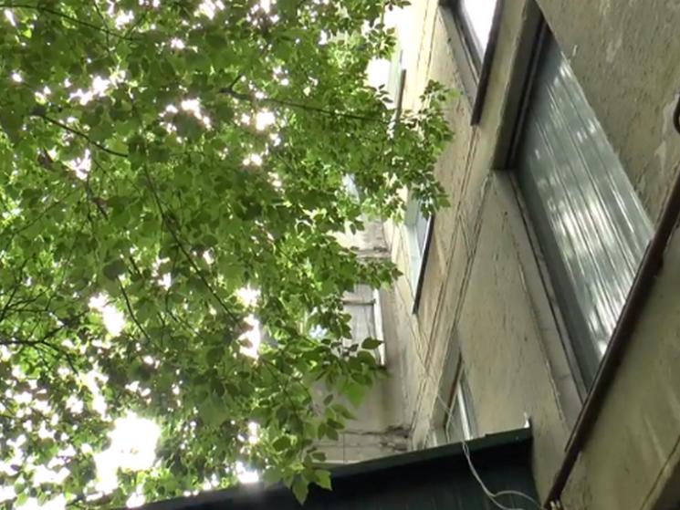 Полтавці скаржаться на аварійне дерево по Ватутіна, яке вибиває їм вікна (ВІДЕО)