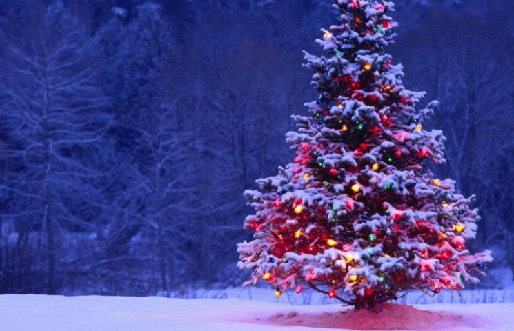 Де і як кияни зможуть відсвяткувати Новий рік