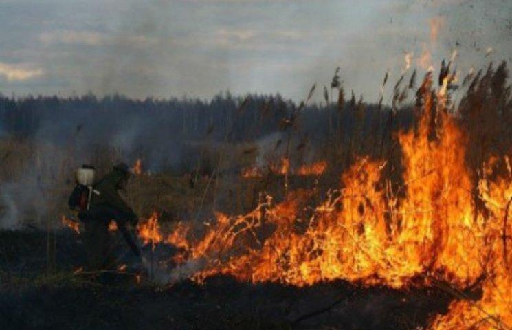 На Полтавщині горять торфи