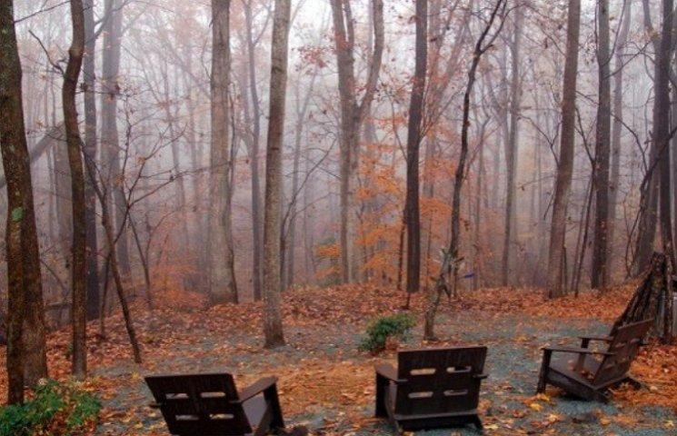 Закарпаття: прогноз погоди на 15 листопада - день чудернацьких імен