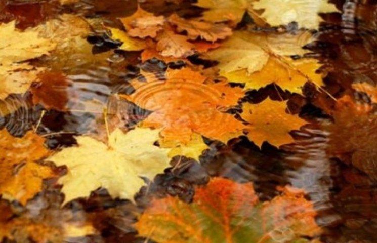 Закарпаття: прогноз погоди на 27 листопада - Пилип, до чогось там прилип