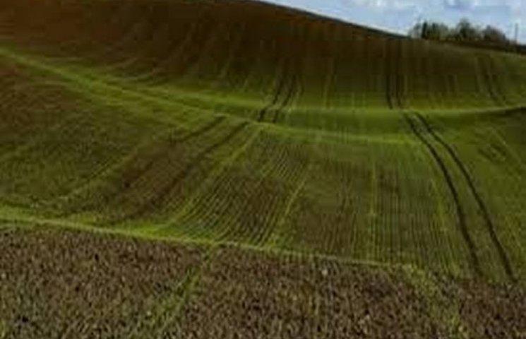 Аграрії Хмельниччини суттєво розширили посівні площі