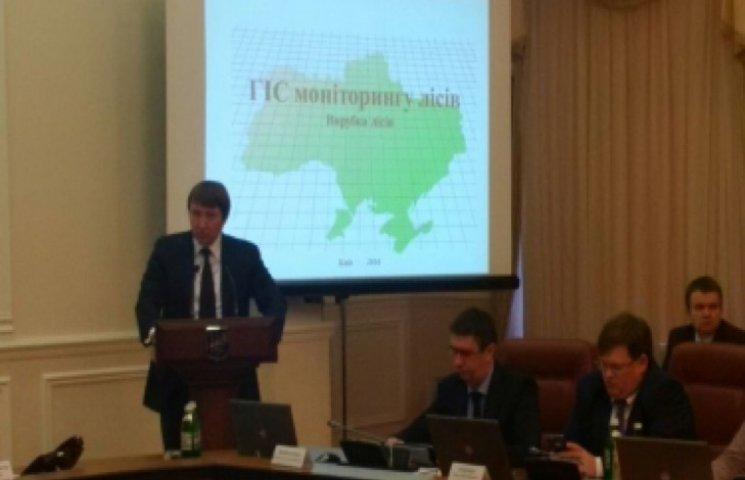 В Украине заработает интерактивная карта вырубки лесов