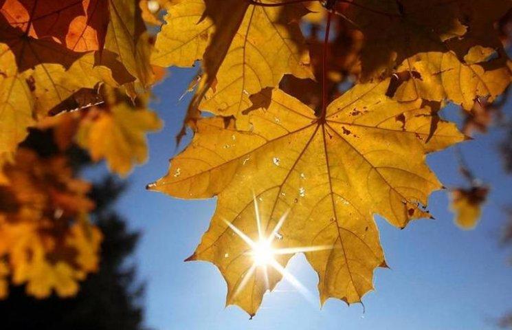 На один день на Вінниччину повернеться золота осінь