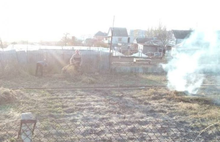 Миколаївця побили за зауваження не спалювати листя (ФОТО, ВІДЕО)