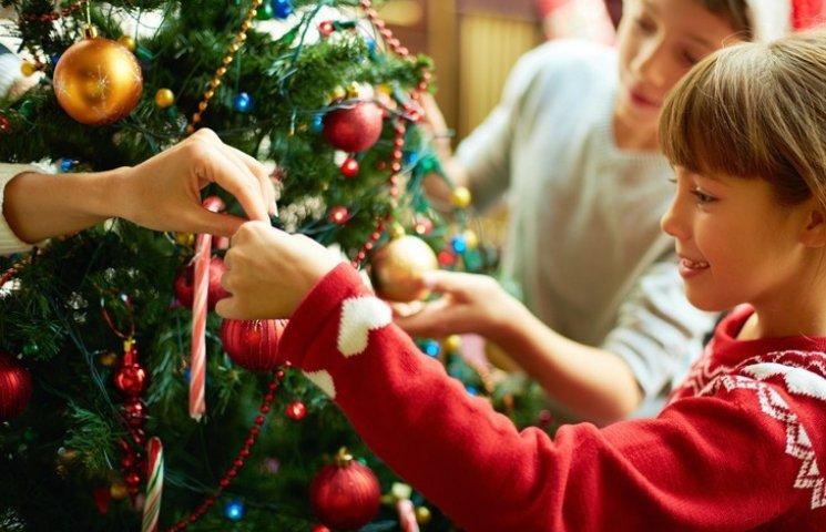 Скільки цьогоріч коштуватиме новорічна ялинка на Полтавщині