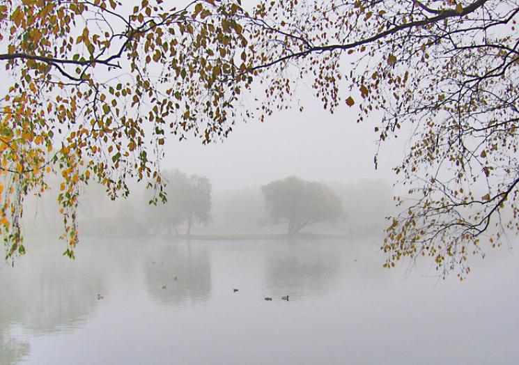 З'явився сонячний прогноз погоди вУкраїні навихідні — Дощі припиняться