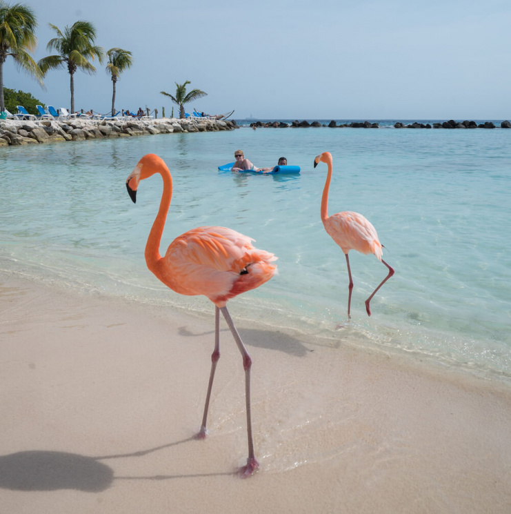 Cancun mexico all inclusive vacation deals