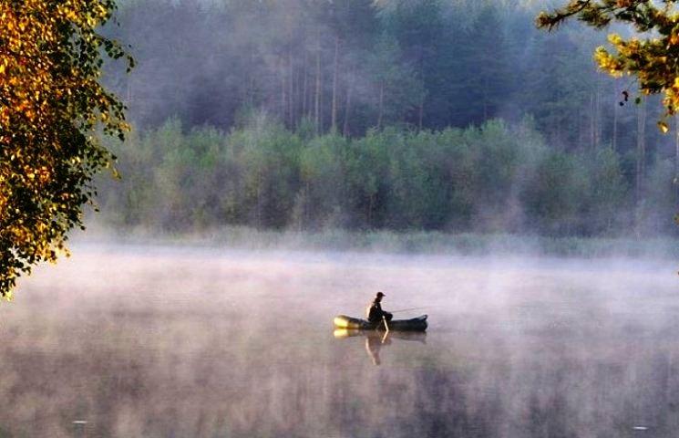 """Що 19 листопада """"розкажуть"""" зірки, гуси та коні, і чому цього дня слід побувати біля ріки"""
