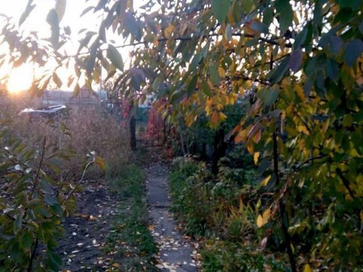 Хмарно та без опадів: Якої погоди чекати у Черкасах 2 листопада