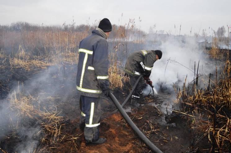 На Чернігівщині досі горять торфовища (ФОТО)