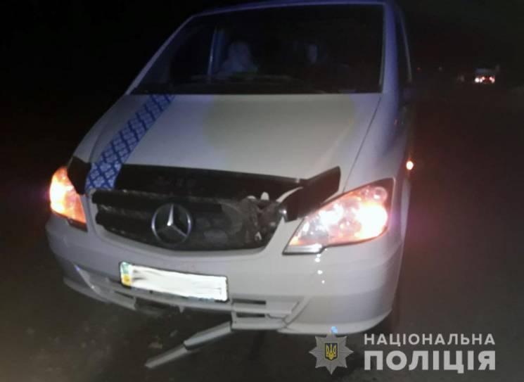 Хмельничани на Житомирщині насмерть збили пішохода