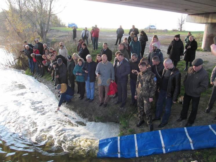 На Сумщині зариблили річку товстолобом та карпом