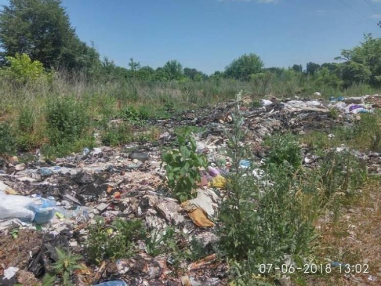 У Вінницькому районі виявили невпорядковане сміттєзвалище