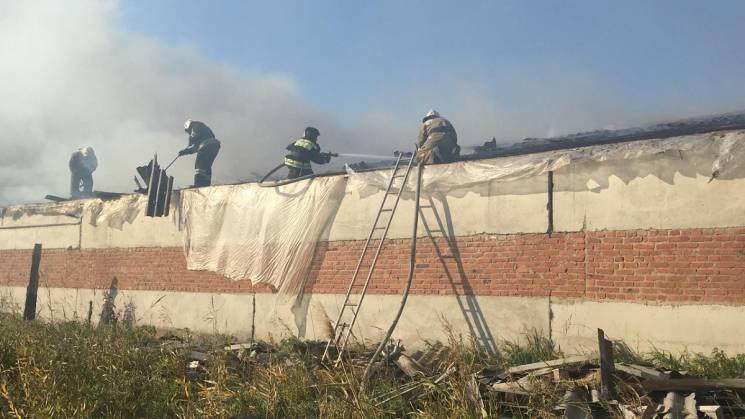 Під Краснодаром була ліквідована масштабна пожежа, ніхто не постраждав