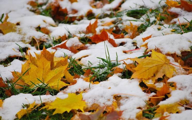 Крижаний вітер та мокрий сніг: Киянам спрогнозували погоду до кінця осені