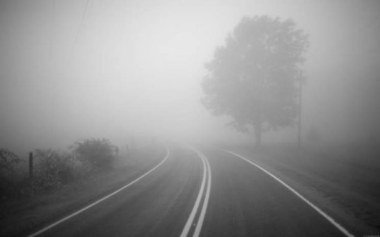 Туман на Закарпатті: Патрульна поліція нагадує водіям про правила керування (ІНФОГРАФІКА)