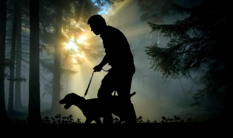 Міжнародний день сліпих: Неймовірні фото собак-поводирів, які рятують життя незрячим