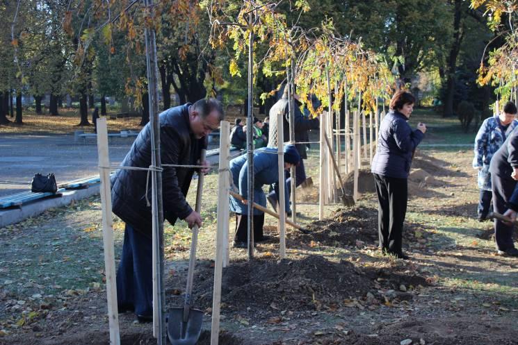 У Кривому Розі на честь загиблих АТОвців висадили горобинову алею (ФОТО)