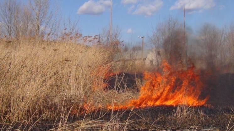 В Ужгороді горіла суха трава на відкритій території