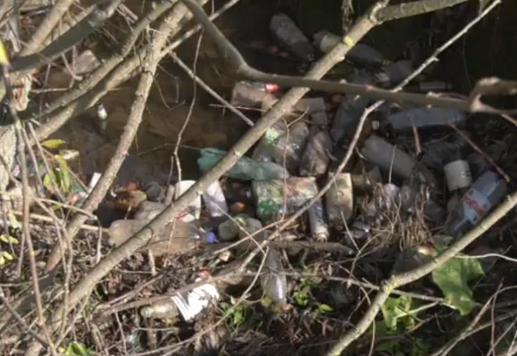 Гірські струмки Воловеччини потопають у смітті (ВІДЕО)