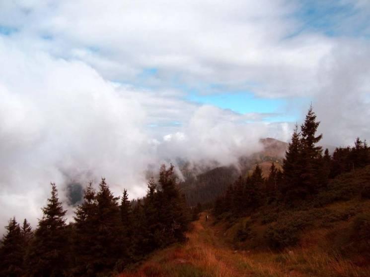 Осінь у Карпатах: Як біля гори Піп Іван можна прогулятися між хмарами (ФОТО)