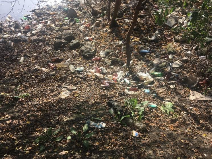 """Волосся дибки: В мережі показали """"сміттєві"""" фото з окупованого Севастополя (ФОТО)"""