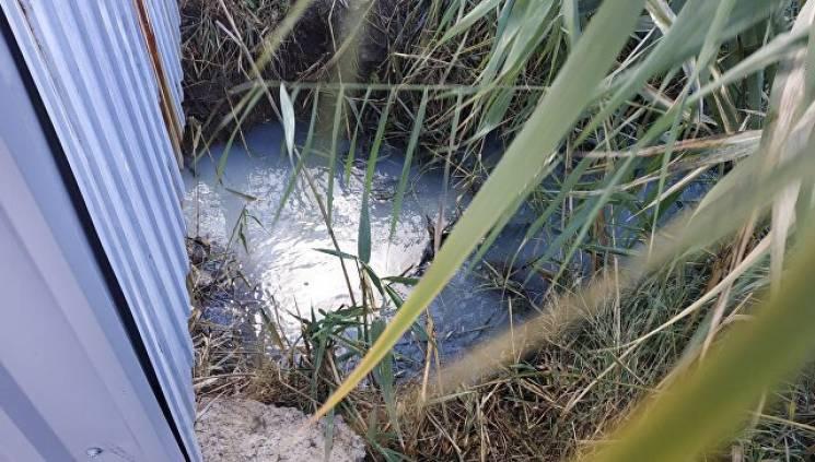 Екокатастрофа: У цілющі озера в Саках зливали каналізаційні стоки (ФОТО)