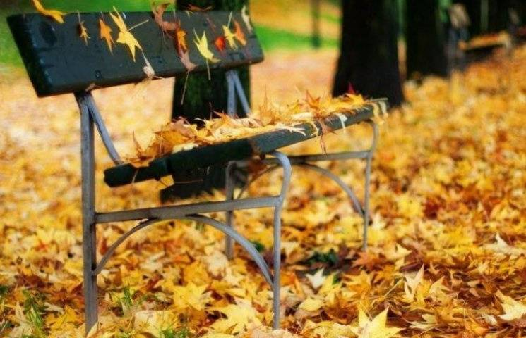 Закарпаття: Прогноз погоди на 10 листопада - без опадів